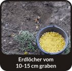 ANIS - ANISE - Wildlockmittel Konzentrat 1 kg Flasche / Art. Nr. BU-18006
