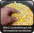 MAKRELLE -  MACKEREL - Wildlockmittel Konzentrat 1 kg Flasche / Art. Nr. BU-18008