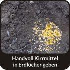 ERDBEERE - SRAWBERRY - Wildlockmittel Konzentrat 1 kg Flasche / Art. Nr. BU-18011